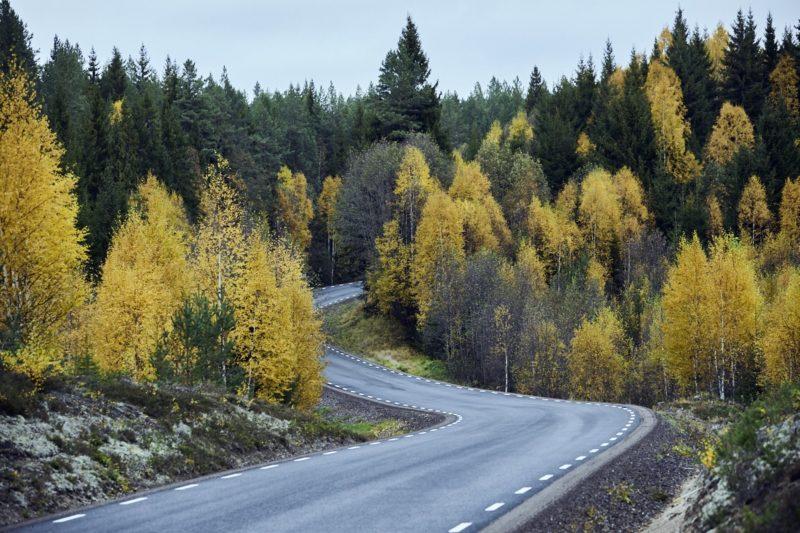 Die 10 besten Tipps für deinen Herbst-Trip nach Schweden